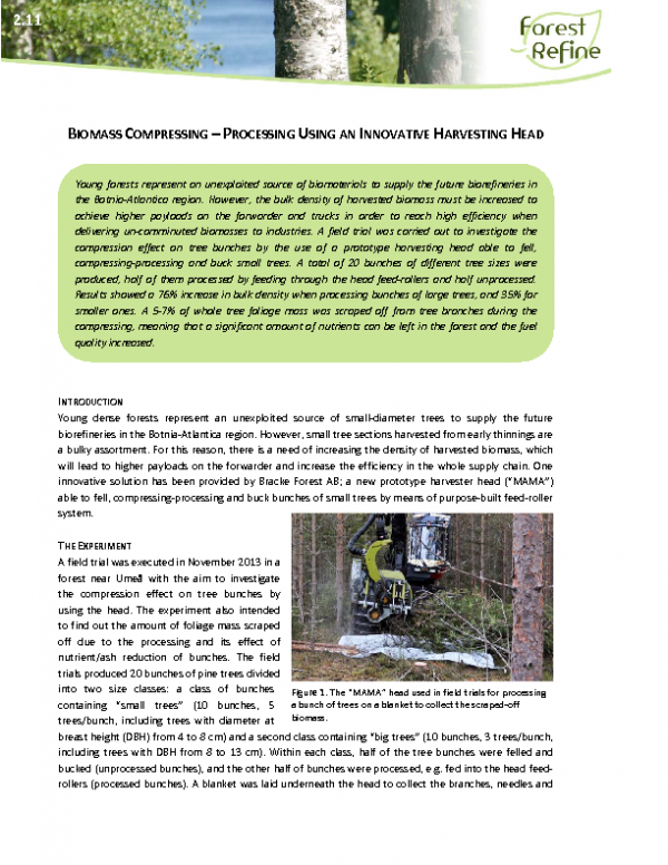 2_11_IS_2014-02-24_Biomass_compression_Fernandez_Fulvio