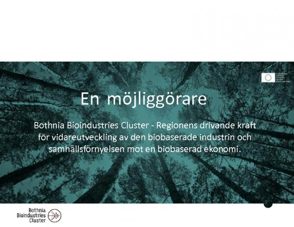 2017-05-10 Klustersamverkan – skogsindustriell värdekedja, Ulf Westerberg