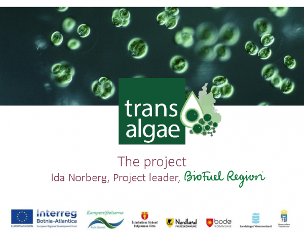 Ida Norberg – BioFuel Region