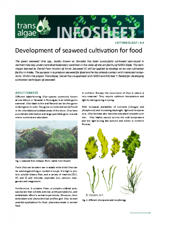 2017 No 8 Development of seaweed cultivation for food