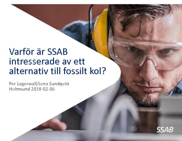 Bio4Metals_Per Lagerwall_Lena Sundqvist Ökvist