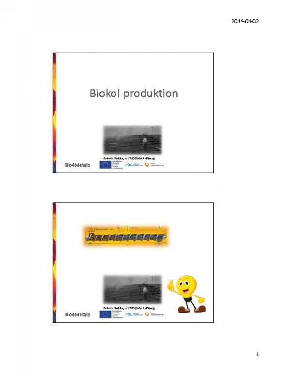 2019 Biokolsproduktion – allmänt och Bio2Fuels