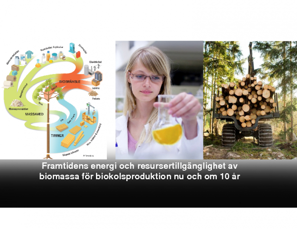 2019 Framtidens energi och resursertillgänglighet av biomassa för biokolsproduktion nu och om 10 år